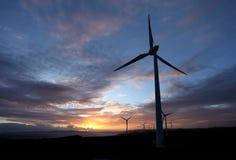 De mening van de zonsondergang bij windlandbouwbedrijf Royalty-vrije Stock Afbeeldingen