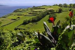De mening van groen eiland Faial. De Azoren. Royalty-vrije Stock Afbeeldingen