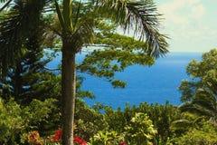 De mening van Hawaï Royalty-vrije Stock Fotografie