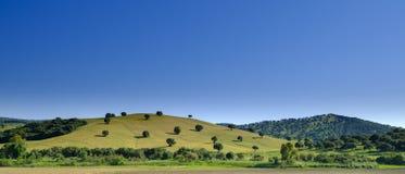 De mening van het Andalucianplatteland in de vroege zomer royalty-vrije stock afbeelding