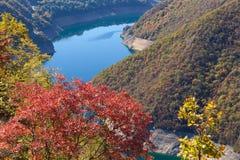 De mening van het berglandschap in canion van rivier Piva in Montenegro Royalty-vrije Stock Foto