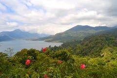De Mening van het Buyanmeer in Bali Royalty-vrije Stock Foto's