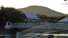 De mening van het geneeskundepark van bruggen stock afbeeldingen