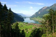 De mening van het het plattelandspanorama van Zwitserland in de zomer Royalty-vrije Stock Afbeeldingen
