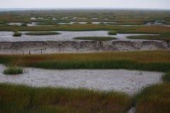 De mening van het moerasland in de winter Royalty-vrije Stock Fotografie