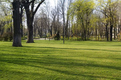 De Mening van het park Stock Afbeeldingen