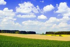De Mening van het platteland