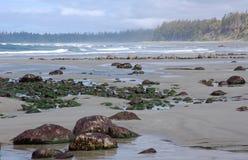 De mening van het strand in baai Florencia Stock Afbeeldingen