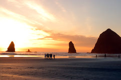 De Mening van het Strand van de Kust van Oregon Royalty-vrije Stock Afbeelding