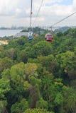 De mening van het vogeloog van kabelwagen over groen park Royalty-vrije Stock Afbeeldingen