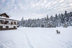 De mening van het de winterlandschap met pijnboombos royalty-vrije stock afbeelding