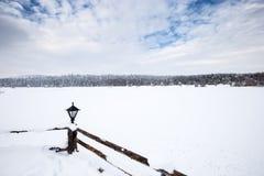 De mening van het de winterlandschap met pijnboombos stock afbeelding