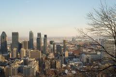 De mening van Montreal van mont-Koninklijk Royalty-vrije Stock Afbeeldingen