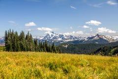 De mening van MT Shuksan over alpiene weiden van Horizon verdeelt stock afbeeldingen