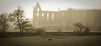 De mening van Pictoresque van Engels kasteel Stock Afbeeldingen