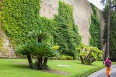 De mening van Vatikaan tuiniert aan hoge steenbakstenen muur met groene vegetatie, wijnstok, bloemen, heldere gazons en palmen, R Royalty-vrije Stock Afbeeldingen