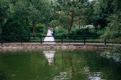 De mening van verafgelegen de bruid en de bruidegom bevindt zich in het midden van de brug met een bos op de dag van hun huwelijk royalty-vrije stock fotografie