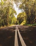 De mening van de wegreis stock fotografie