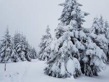 De mening van de winterbergen Royalty-vrije Stock Afbeeldingen