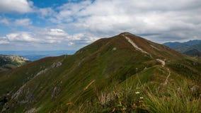 De Meningen en Trekking Czerwone Wierchy van Tatrybergen Stock Afbeeldingen