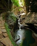 De meningen van Watkinsglen state park new york stock afbeelding