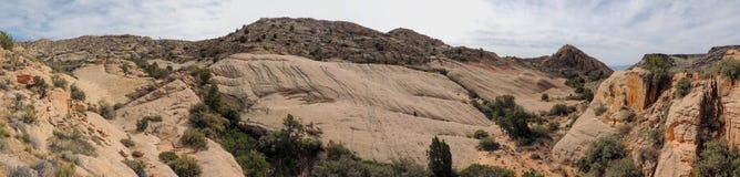 De meningen van zandsteen en lava schommelen bergen en woestijninstallaties rond het Rode Gebied van het Klippen Nationale Behoud stock fotografie