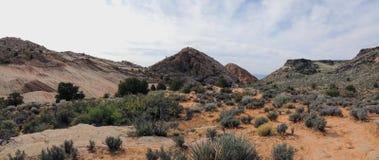 De meningen van zandsteen en lava schommelen bergen en woestijninstallaties rond het Rode Gebied van het Klippen Nationale Behoud royalty-vrije stock foto