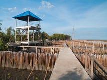 De meningspunt van de toren en ffield van bamboebuis Royalty-vrije Stock Foto's