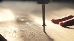 De mens de arbeider haalt de schroef met een schroevedraaier aan De draai van de schroevenschroevedraaier in houten raad Schrijnw stock footage