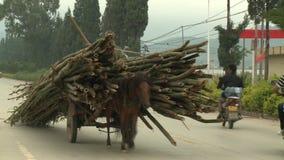 De mens berijdt een paard op de weg aan het dorp