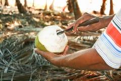 De mens die kokosnoot voorbereidt voor eet Stock Foto