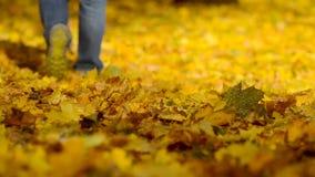 De mens die op de herfst lopen gaat weg stock videobeelden
