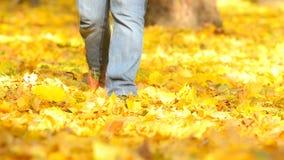 De mens die op de herfst lopen gaat weg stock footage