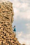 De mens die van de uitdaging de grote stapel van logboeken beklimmen Royalty-vrije Stock Afbeeldingen