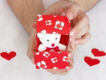 De mens doet een voorstel Teddybeer in een rode doos met harten als gift royalty-vrije stock afbeelding