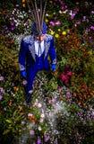 De mens in duur donkerblauw kostuum van illusionist stelt op bloemweide. Stock Foto's