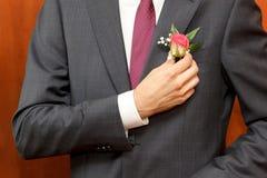 De mens in een grijs kostuum verbetert hand van een rood toenam boutonniere Stock Fotografie