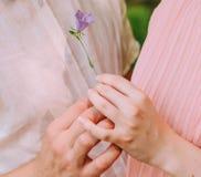 De mens gaf het meisje een kleine bloem royalty-vrije stock fotografie