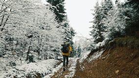 De mens in geel jasje lanceert langs de weg onder de bergen die met sneeuw worden behandeld Bloem in de sneeuw stock videobeelden