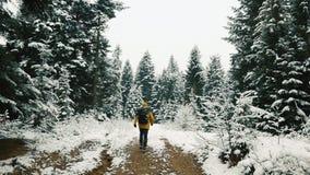 De mens in geel jasje lanceert langs de weg onder de bergen die met sneeuw worden behandeld Bloem in de sneeuw stock video