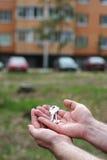 De mens houdt sleutels aan flat op een achtergrond Stock Fotografie