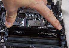 De mens installeert een Ddr 4 DIMM 16 de Woedegeheugen RAM Module van GB Kingston HyperX in de groef op de motherboard close-up royalty-vrije stock afbeeldingen