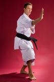 De mens in karate stelt royalty-vrije stock foto's