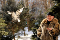 De mens kwam aan het park in de winter voeden titmouses en duiven Royalty-vrije Stock Afbeeldingen