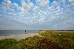 De mens loopt langs het wilde strand Stock Afbeelding