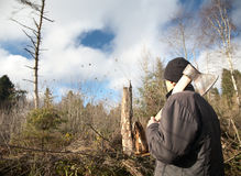 De mens met een bijl bekijkt getuimeld onderaan hout Stock Fotografie