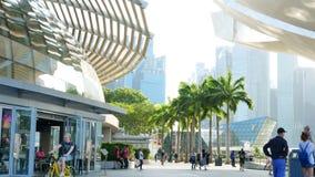 De mens met het kind gaat het kader dichtbij Shoppes in in Marina Bay Sands stock video