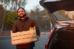 De mens met houten doos van gele rijpe gouden appelen bij het boomgaardlandbouwbedrijf laadt het aan zijn autoboomstam Kweker het stock afbeeldingen