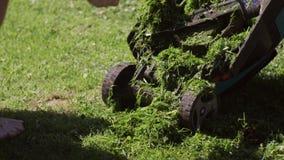 De mens in overhemd, die ontruimt van gras elektrische grasmaaimachine hurken stock video