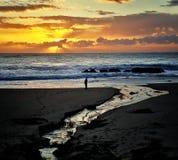 De mens overweegt de Zonsondergang bij het Strand stock foto